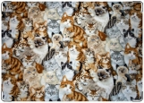 Обложка на паспорт, Много много кошек
