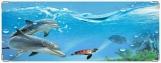 Обложка на зачетную книжку, Подводный мир