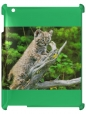 Чехол для iPad 2/3, Детеныш леопарда