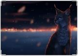 Блокнот, Night cat