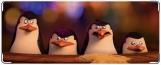 Обложка на студенческий, Penguins