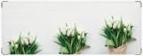 Обложка на зачетную книжку, Tulips зачетка