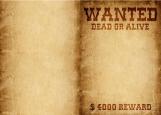 Обложка на паспорт без уголков, Wanted