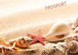 Обложка на паспорт без уголков, Ракушки
