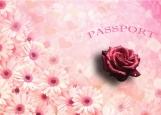 Обложка на паспорт без уголков, цветок