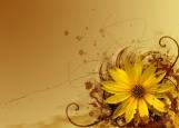 Обложка на автодокументы без уголков, цветы