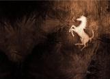 Обложка на автодокументы без уголков, Год лошади