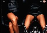 Обложка на автодокументы без уголков, Harley-Davidson