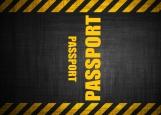 Обложка на паспорт без уголков, Passport