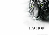 Обложка на паспорт без уголков, белый тигр
