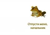 Обложка на автодокументы без уголков, Hypnofrog