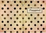 Обложка на паспорт без уголков, Винтажная