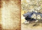 Обложка на паспорт без уголков, Японская живопись