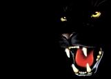 Обложка на автодокументы без уголков, Panther