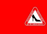 Обложка на автодокументы без уголков, туфелька