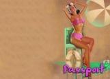 Обложка на паспорт без уголков, Пин Ап 20