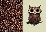 Обложка на автодокументы без уголков, Кофейная Сова