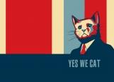 Обложка на паспорт без уголков, Yes We Cat