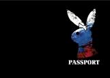Обложка на паспорт без уголков, Russian Playgirl