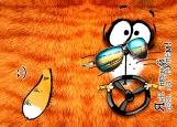 Обложка на автодокументы без уголков, кот