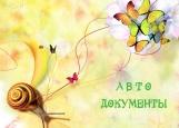Обложка на автодокументы без уголков, Бабочки и улитка