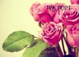 Обложка на паспорт без уголков, Розовые розы